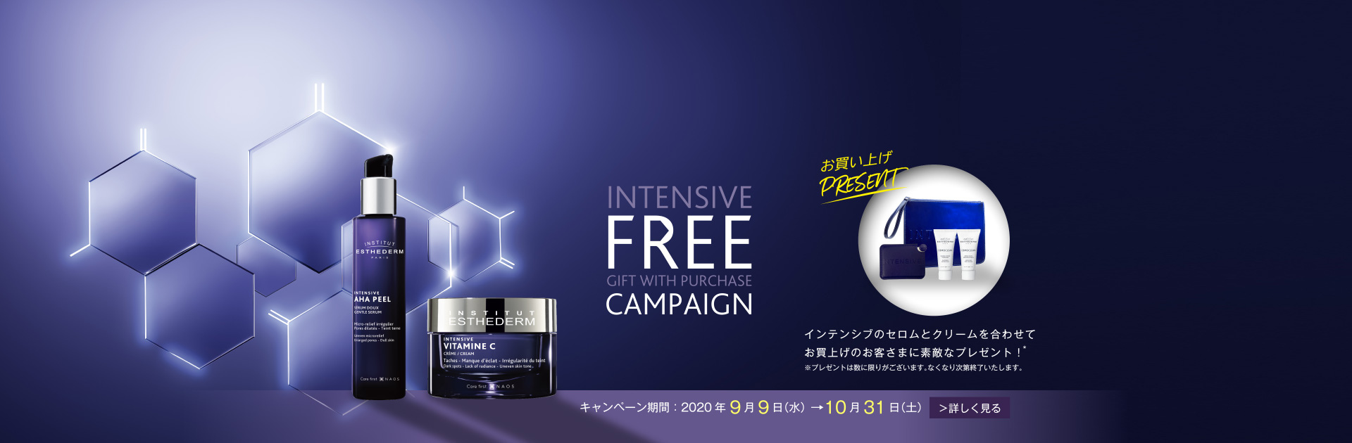 INTENSIVE CAMPAIGN  FREE GIFT WITH PURCHASE キャンペーン期間:2020年9月9日(水)→10月31日(土) 詳しく見る